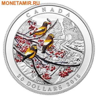 Канада 20 долларов 2015.Вечерний дубонос - Зима.Природные явления.Арт.60 (фото)
