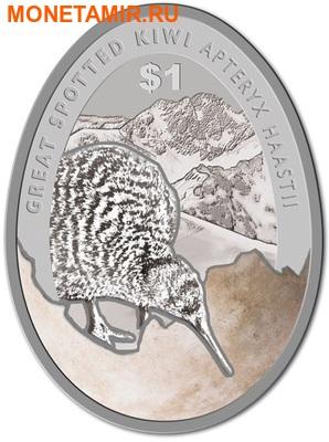 Новая Зеландия 1 доллар 2016.Киви (блистер).Арт.60 (фото)