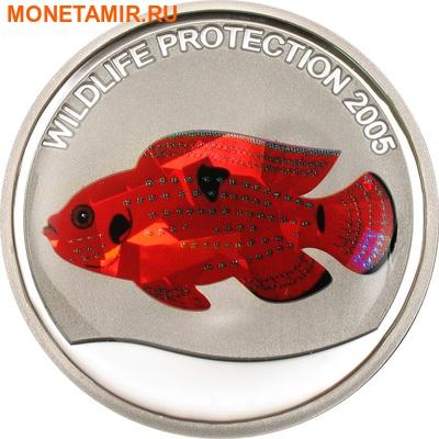 Конго 10 франков 2005.Рыба - Цыклида (призма).Арт.60 (фото)