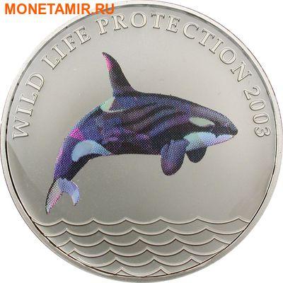 Конго 5 франков 2003.Касатка (призма).Арт.60 (фото)