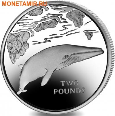 Южная Георгия и Южные Сендвичевы острова 2 фунта 2016.Кит – малый полосатик (серебро).Арт.60 (фото)