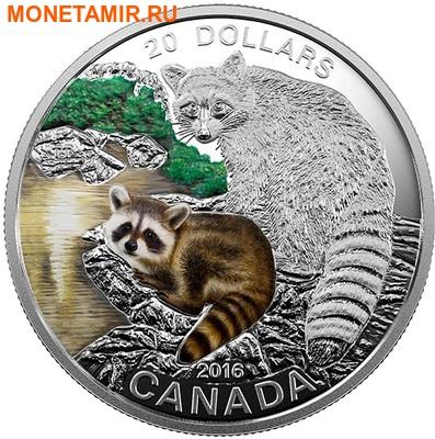 Канада 20 долларов 2016.Енот с детенышем серия Детеныши животных.Арт.60 (фото)