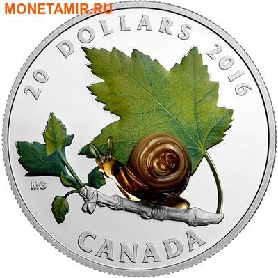 Канада 20 долларов 2016.Улитка – Муранское стекло.Арт.60 (фото)