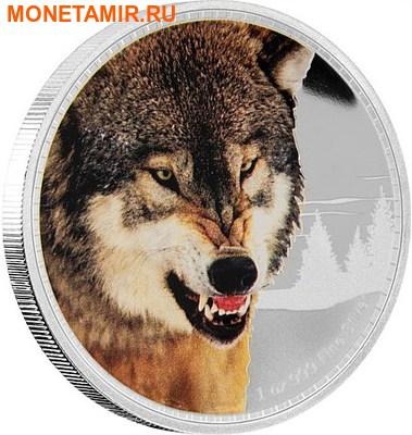 Ниуэ 2 доллара 2016.Серый Волк серия Короли Континентов.Арт.60 (фото)