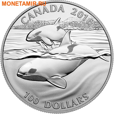 Канада 100 долларов 2016.Кит.Арт.60 (фото)