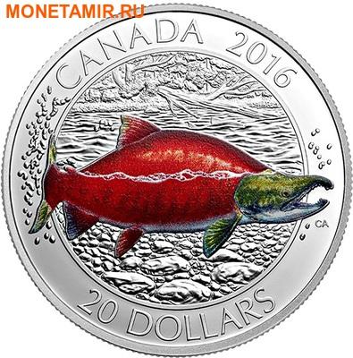 Канада 20 долларов 2016.Нерка.Арт.60 (фото)
