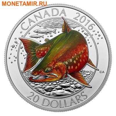 Канада 20 долларов 2016.Арктический Голец.Арт.60 (фото)