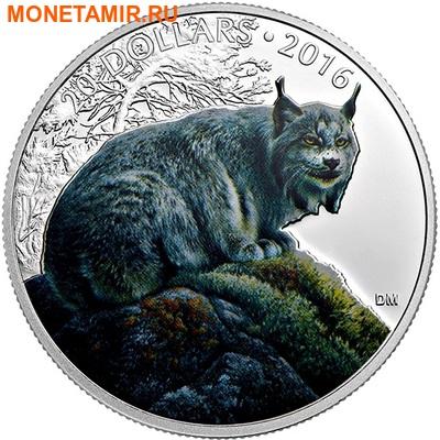 Канада 20 долларов 2016.Рысь серия Величественные животные.Арт.60 (фото)