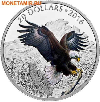 Канада 20 долларов 2016.Белоголовый орел серия Величественные животные.Арт.60 (фото)