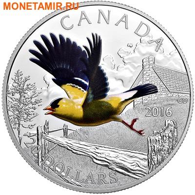 Канада 20 долларов 2016.Птица Американский Щегол.Арт.60 (фото)