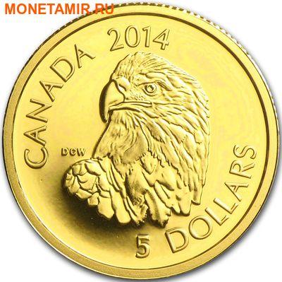 Канада 5 долларов 2014.Белоголовый орлан.Арт.60 (фото)