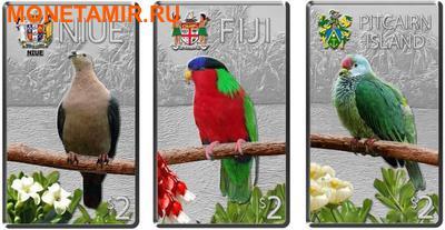 Ниуэ Фиджи Острова Питкэрн 3х2 доллара 2013.Голубь (Pacific Pigeon) Попугай (Collard Lory) Голубь (Henderson Island Fruit Dove) - Птицы Тихоокеанских островов.Арт.000813246446/60