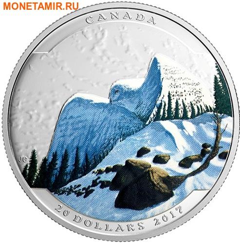 Канада 20 долларов 2017.Сова серия Иллюзия ландшафта.Арт.60 (фото)