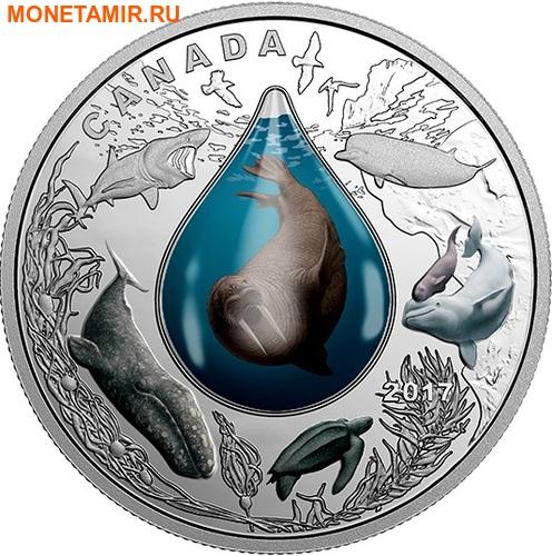 Канада 20 долларов 2017.Подводная жизнь 3D капля.Арт.60 (фото)