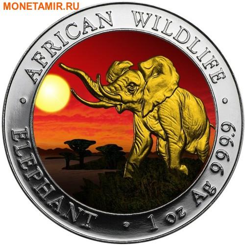 Сомали 100 шиллингов 2016.Слон.Арт.60 (фото)