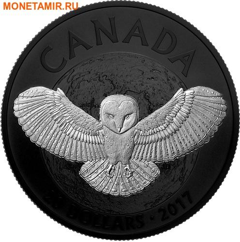 Канада 20 долларов 2017 Сова – Ночная природа (Canada 20C$ 2017 Nocturnal by Nature Barn Owl).Арт.000487853779/60 (фото)