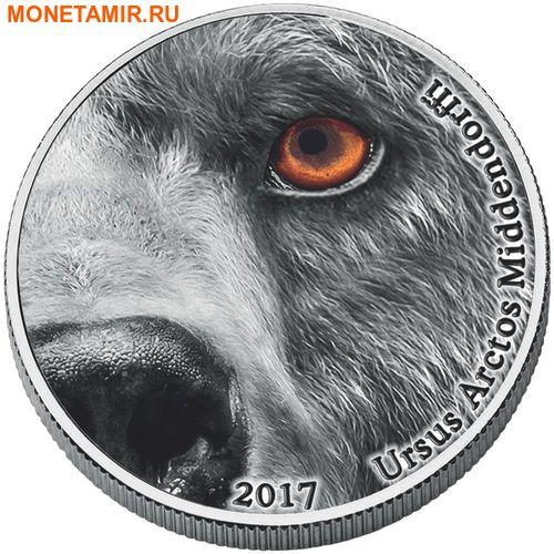 Конго (Народная Республика) 2000 франков 2017 Кадьяк Медведь серия Глаза природы (Ursus arctos middendorffi Natures Eyes).Арт.000819153949/60 (фото)