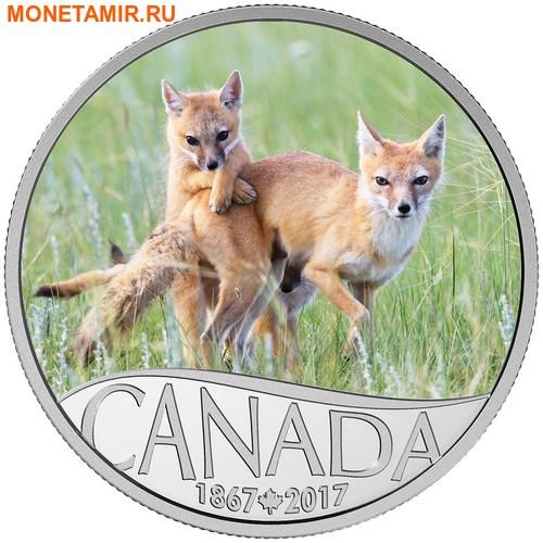 Канада 10 долларов 2017 Лиса с детенышем – 150 лет Празднования Канады.Арт.000196553933/60 (фото)