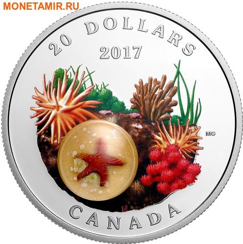 Канада 20 долларов 2017 Морская звезда серия Под водой.Арт.60 (фото)
