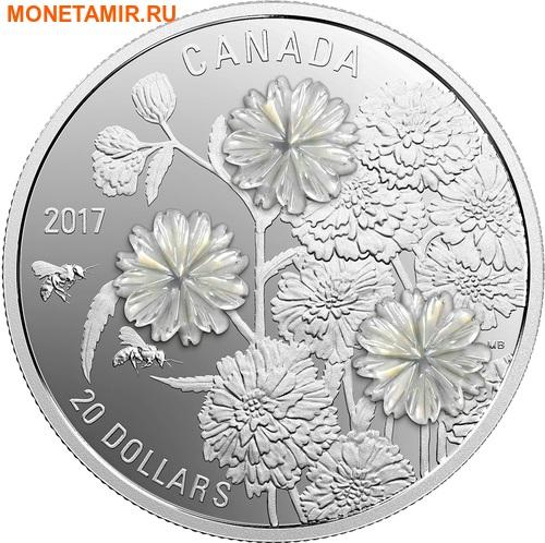 Канада 20 долларов 2017 Перламутровый цветок Тысячелистник птармика (achillea ptarmica).Арт.60 (фото)