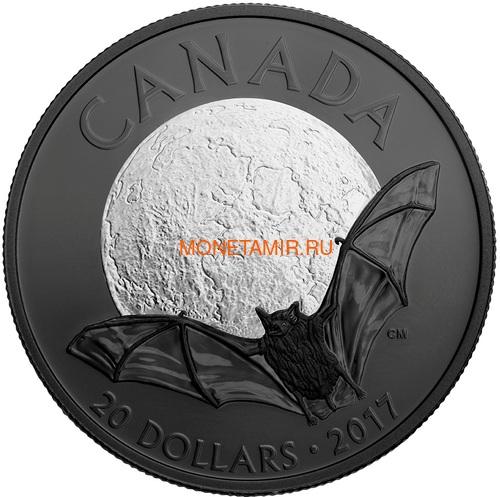 Канада 20 долларов 2017 Маленькая коричневая летучая мышь – Ночная природа (Canada 20C$ 2017 Nocturnal by Nature Little Brown Bat).Арт.000516254471/60 (фото)
