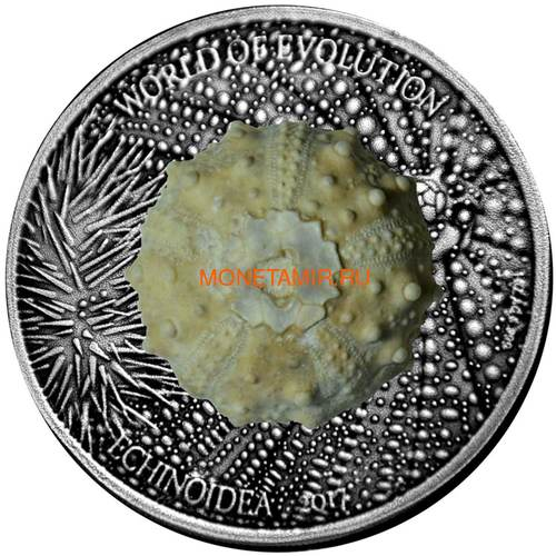 Буркина Фасо 1000 франков 2017 Морские Ежи – Мир эволюции (Burkina Faso 1000FCFA 2017 Echinoidea Fossil Sea Urchin World of Evolution).Арт.60 (фото)