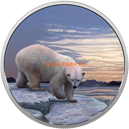 Канада 30 долларов 2018 Полярный Медведь серия Арктические животные и Северное сияние (Canada 30$ 2018 Glow-In-The-Dark Coin Arctic Animals and Northern Lights Polar Bear).Арт.60 (фото)