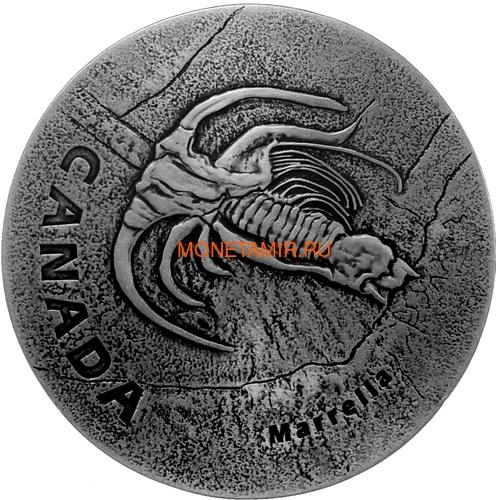 Канада 20 долларов 2018 Маррелла Древняя Канада (Canada 20C$ 2018 Ancient Canada Marrella).Арт.60 (фото)
