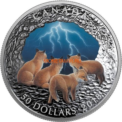 Канада 50 долларов 2018 Лисы Ночная Гроза Молния Природные Явления (Canada 50C$ 2018 Nature's Light Show Stormy Fox Night Glow-in-the-Dark Coin) Выпуклая форма.Арт.64 (фото)