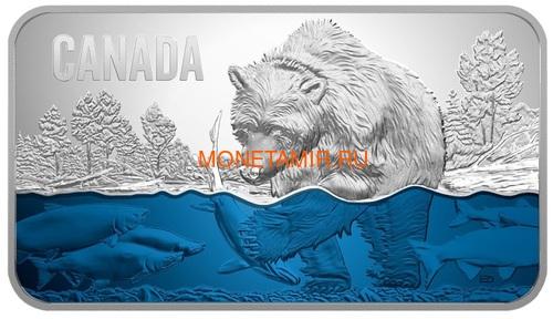 Канада 25 долларов 2018 Медведь Ловит Лосось (Canada 25$ 2018 Salmon Run Ultra High Relief Silver Coin).Арт.69 (фото)