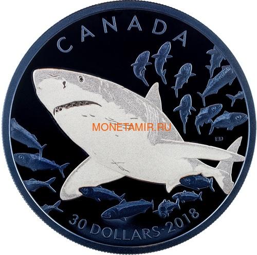 Канада 30 долларов 2018 Большая Белая Акула Родий (Canada 30$ 2018 Great White Shark Blue Rhodium Plating 2oz Silver Coin).Арт.69 (фото)