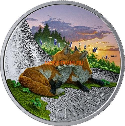 Канада 20 долларов 2019 Лиса Животные Канады (Canada 20$ 2019 Canadian Fauna The Fox Silver Coin).Арт.67 (фото)