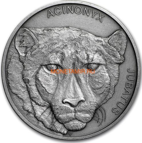 Ниуэ 1 доллар 2019 Гепард Животные Чемпионы (Niue 1$ 2019 Cheetah Animal Champions 1 oz Silver Coin) Буклет.Арт.67 (фото)