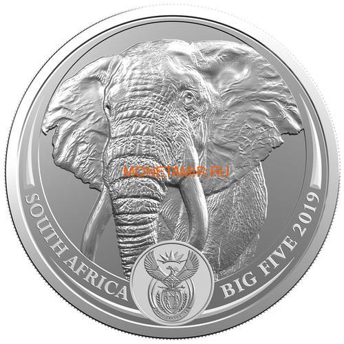 Южная Африка 5 рандов 2019 Слон Большая Африканская Пятерка (South Africa 5R 2019 Elephant Big Five 1 oz Silver Coin) Блистер.Арт.67 (фото)