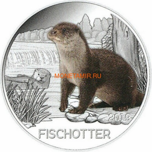 Австрия 3 евро 2019 Выдра (Colourful Creatures The Otter Austria 3 euro 2019).Арт.67 (фото)