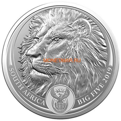 Южная Африка 5 рандов 2019 Лев Большая Африканская Пятерка (South Africa 5R 2019 Lion Big Five 1oz Silver Coin) Блистер.Арт.65 (фото)