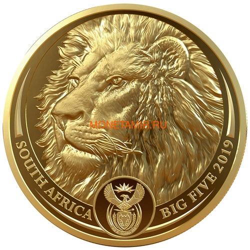 Южная Африка 50 рандов 2019 Лев Большая Африканская Пятерка (South Africa 50 Rand 2019 Lion Big Five 1 oz Gold Coin).Арт.65 (фото)