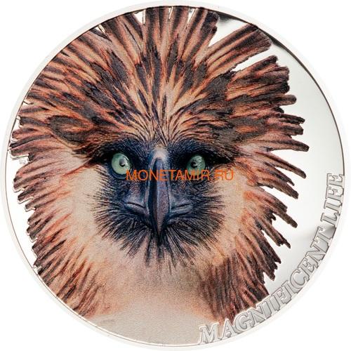 Острова Кука 5 долларов 2019 Филиппинский Орел серия Великолепная Жизнь (Cook Isl 5$ 2019 Magnificent Life Philippine Eagle 1oz Silver Coin).Арт.65 (фото)