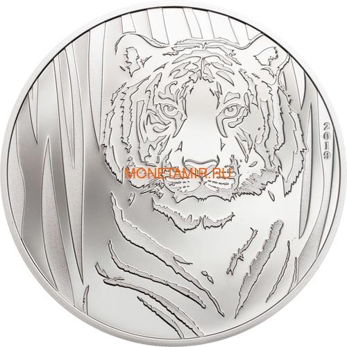 Монголия 250 тугриков 2019 Тигр (Mongolia 250T 2019 Hidden Tiger ½ oz Silver Coin Blister).Арт.65 (фото)