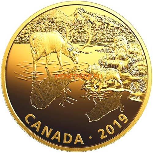Канада 30 долларов 2019 Волки и Лоси Хищник и Добыча (Canada 30$ 2019 Predator and Prey Wolves and Elk 2 oz Gold Plated Silver Coin).Арт.65 (фото)