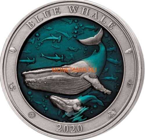 Барбадос 5 долларов 2020 Синий Кит Подводный Мир (Barbados 5$ 2020 Blue Whale Underwater World 3oz Silver).Арт.Е85 (фото)
