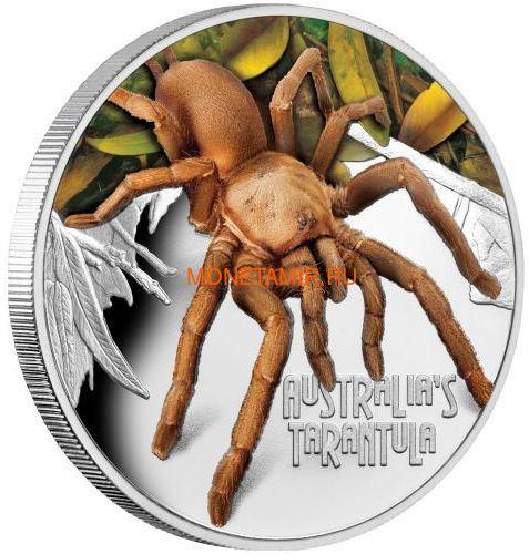 Тувалу 1 доллар 2020 Тарантул Паук серия Смертельно Опасные (Tuvalu 1$ 2020 Deadly Dangerous Tarantula 1oz Silver Coin).Арт.88 (фото)