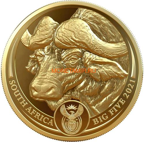 Южная Африка 50 рандов 2021 Буйвол Большая Африканская Пятерка (South Africa 50 Rand 2021 Buffalo Big Five 1oz Gold Coin).Арт.92 (фото)