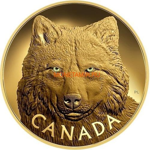 Канада 2500 долларов 2017 Лесной Волк Килограмм ( Canada 2500$ 2017 In The Eyes of a Timber Wolf Kilo Gold Coin ).Арт.92 (фото)