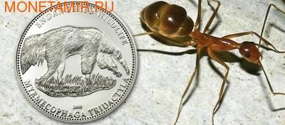 Гиганский муравьед