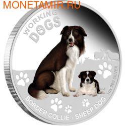 Тувалу 1 доллар 2011.Колли серия Служебные собаки.Арт.000579742206/60
