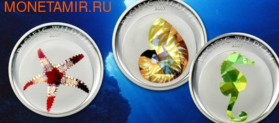 Палау 3x1 доллар 2007.Тихоокеанская дикая природа - Морская звезда Наутилус Морской конек.Арт.60 (фото)