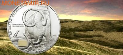Берег Слоновой Кости 1000 франков 2010.Африканский мамонт (с костью мамонта).Арт.60 (фото)