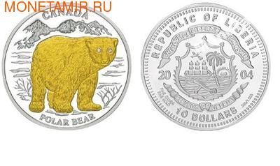 Медведь Канада