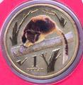 Серия «Животные зоопарка. Древесные кенгуру Гудфеллоу »